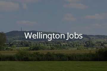 Jobs in Wellington, Somerset